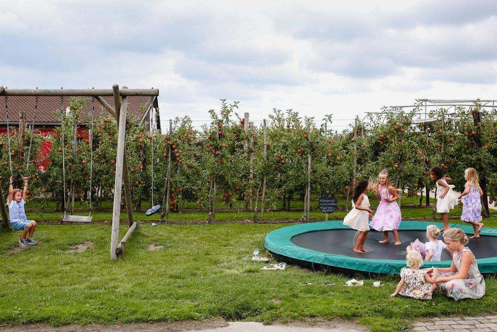 Kinderen op de bruiloft spelen op de trampoline en op het klimtoestel, bruiloften met kinderen, journalistieke bruidsfotografie