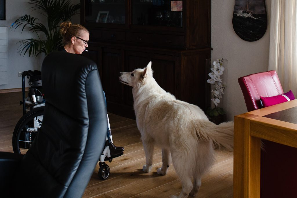 Hulphond Mikey signaleert dat zijn bazin een aanval krijgt en waarschuwt haar hiervoor door haar indringend aan te kijken